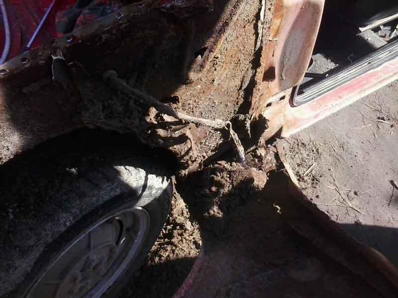 Пару килограмм мусора и песка:)