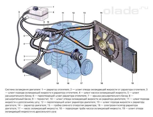 Система охлаждения двигателя Лады